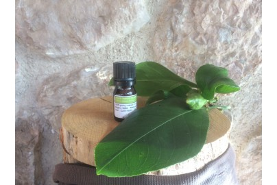 Lemon petitgrain essential oil of Mallorca